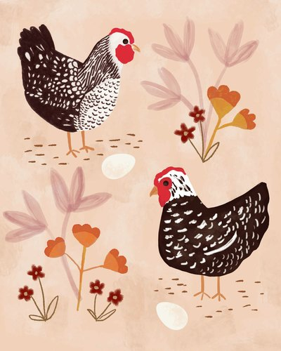 chickens-jpg