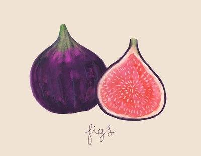 figs-jpg