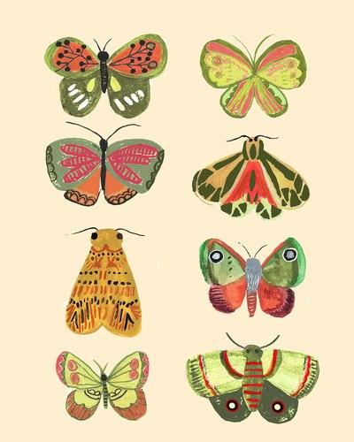 mothsandbutterflies-jpg
