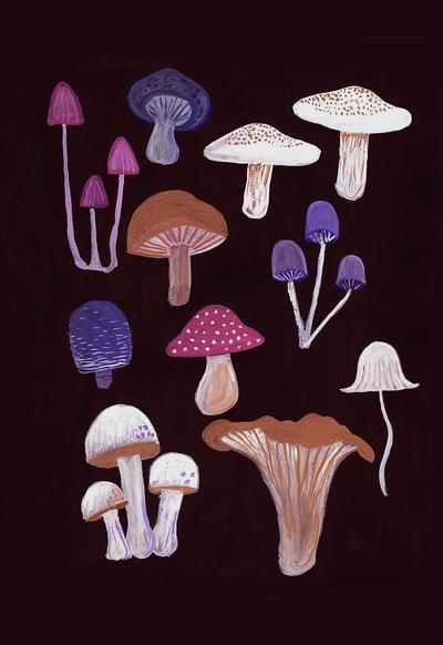 mushrooms-jpg
