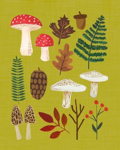 mushroomsandferns-jpg
