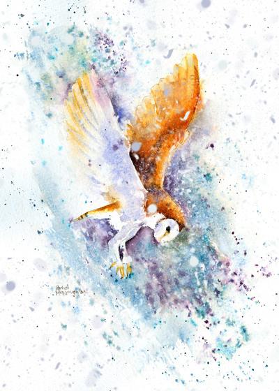 flying-owl-in-snow-jpg