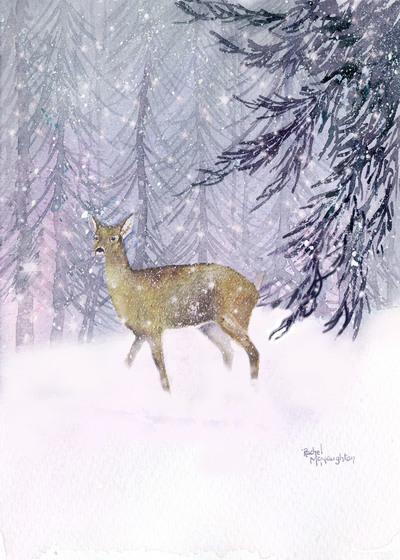 deer-in-a-thicket-jpg