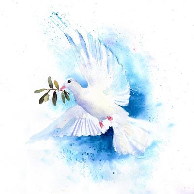 white-dove-3-jpg