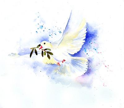 white-dove2-jpg