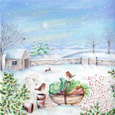 christmas-robin-trug-foilage-snow-tree-vegetable-shed-moon-jpg
