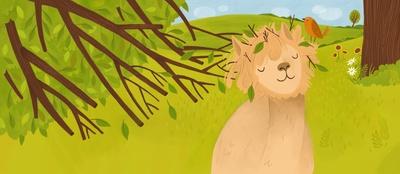 alpaca-tree-hair-jpg