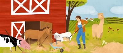 farm-animals-cleaning-barn-alpaca-jpg