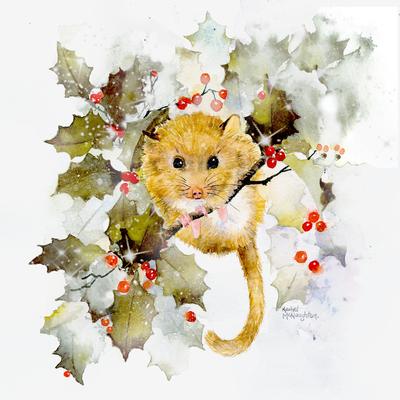christmas-dormouse-colour-sample-1-jpg