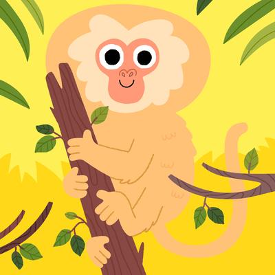 monkey-jpg-20