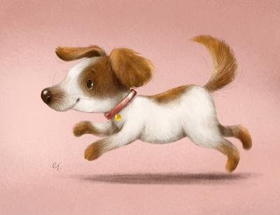 dog-run-jpg