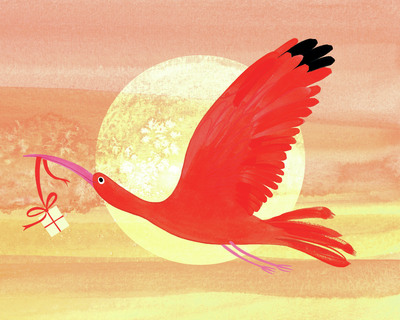 scalett-ibis-white-gift-jorooks-jpg
