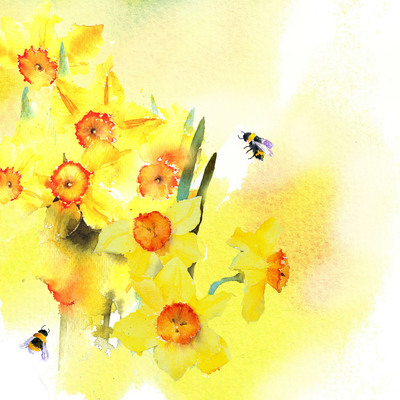 daffodils-and-bees-no-text-jpg
