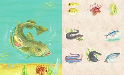 claire-mcelfatrick-dk-fish-jpg