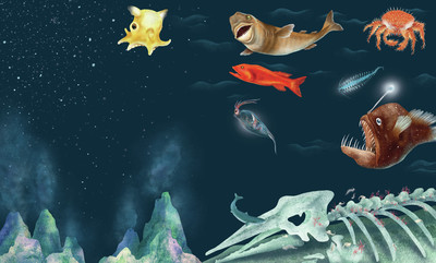 claire-mcelfatrick-dk-deep-sea-jpg