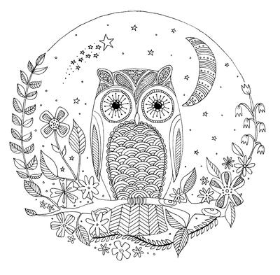 lizzie-preston-owl-jpg