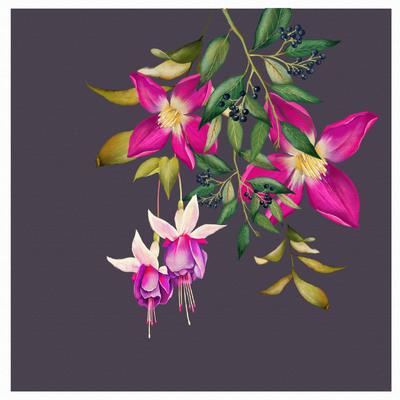 botanical-design-6-01-jpg