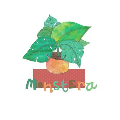 ad4143a-monstera-pot-plant-jpg