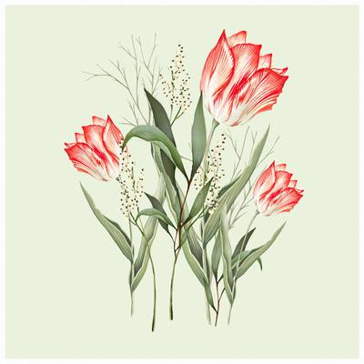 new-botanical-design1a-01-jpg