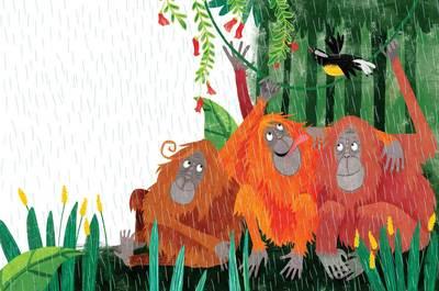 foresttales-thepluckyorangutan-11ww-jpg