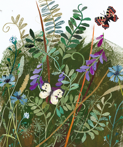 flowers-glade-meadow-butterflies-jpg