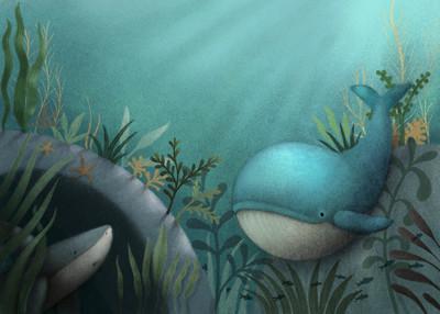 whale-shark-sea-jpg