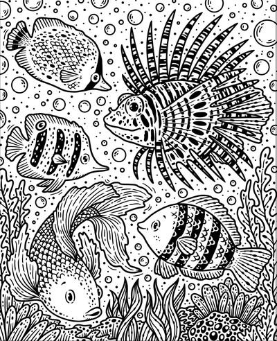 mp-sea-creatures-tropical-fish-reef-a-jpg
