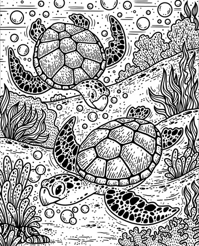 mp-sea-creatures-turtle-3-a-jpg