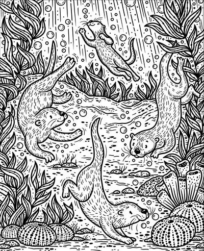 mp-sea-creatures-sea-otter-a-jpg