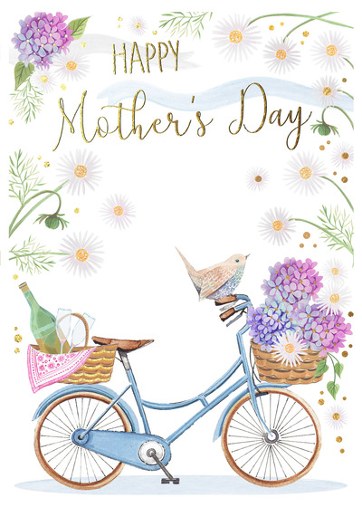 mothers-day-bike-daisies-picnic-champagne-copy-jpg