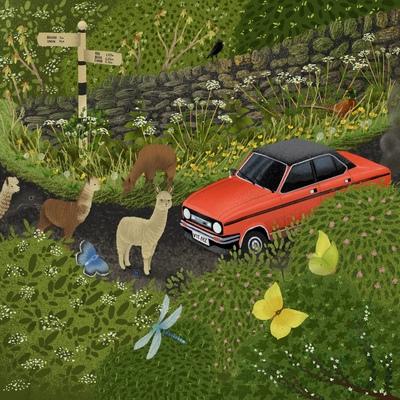 alpaca-escape-jpg
