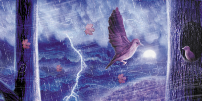 bird-storm-jpg