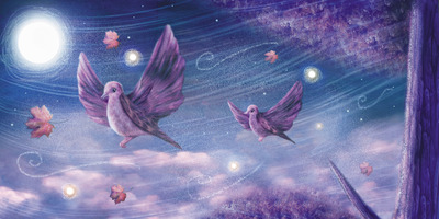 birds-night-jpg