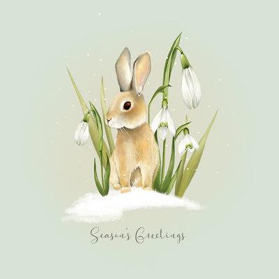 xmas-bunny-design-01-jpg