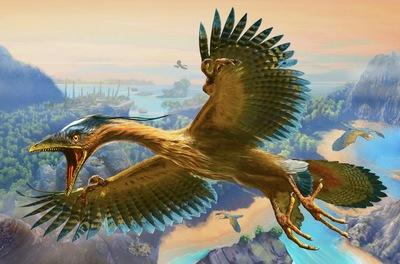 archaeopteryx-jpg
