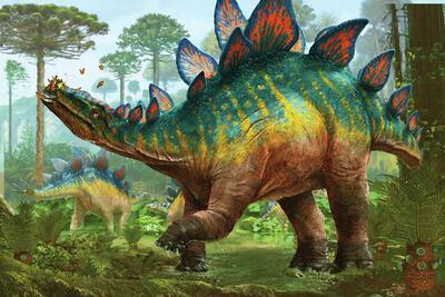 stegosaurus-jpg-1
