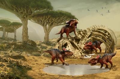 protoceratops-jpg