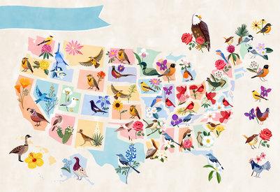 birdmap-jpg