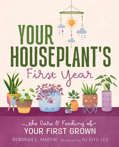 your-houseplant-s-first-year