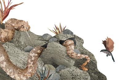 snake-rocks-animals-nature-jpg