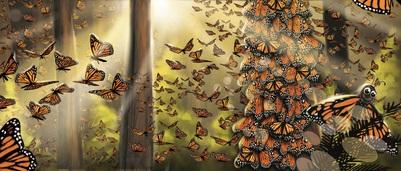 butterflies-forest-jpg