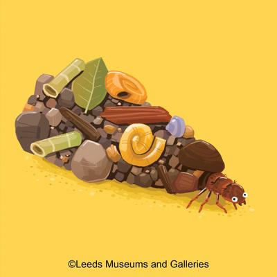 caddisfly-larvae-jpg