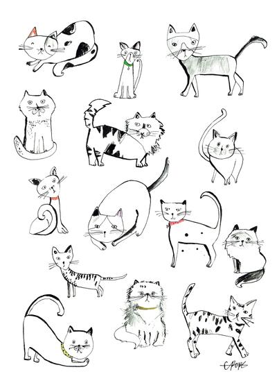 new-cats-jpg