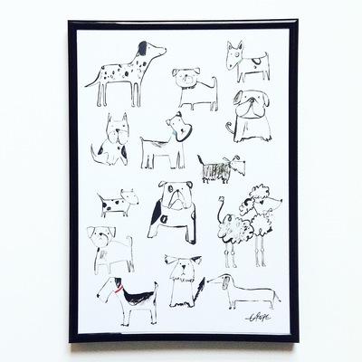 dogs-jpeg