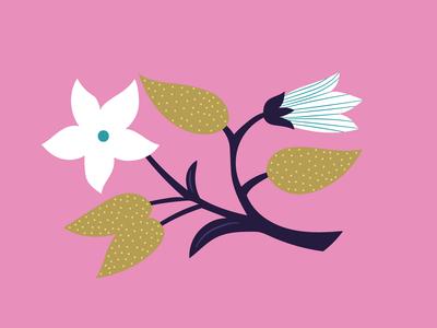 ap-decorative-flower-pink-floral-greeting-card-01-jpg