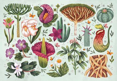 plants02-jpg