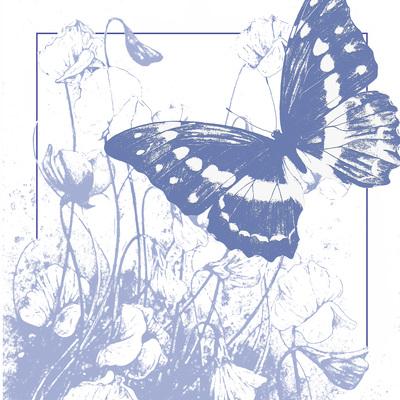 lavender-butterfly-and-flowers-fiona-osbaldstone-jpg