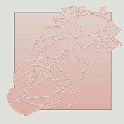 peach-roses-fiona-osbaldstone-jpg
