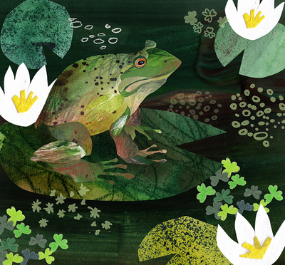 frog-swamp-nature-forest-jpg