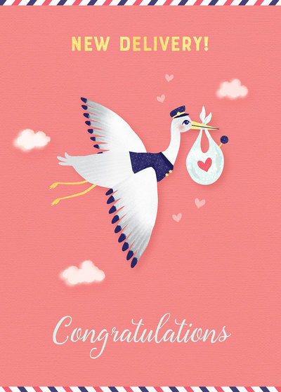 new-baby-girl-baby-shower-stork-with-baby-jpg